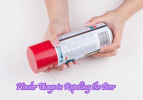 Hinder Deer Repellent- Are They Effective?