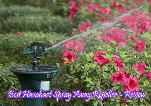 Best Havahart Spray Away Repeller – Review
